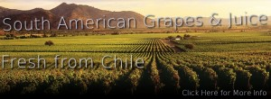 Chilean Grapes and Juice