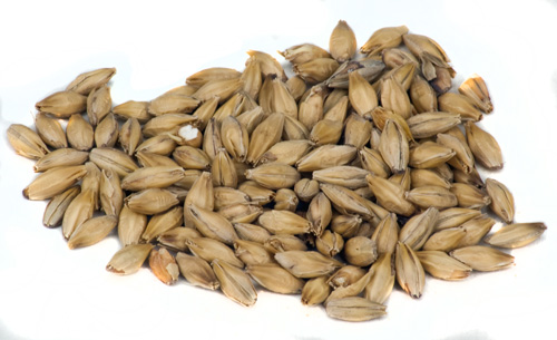 Dingemans :Pale Malt 1 lb. (1)