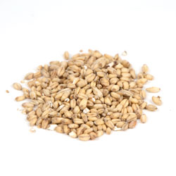 Great Western Malted: White Wheat 10 lb (1)