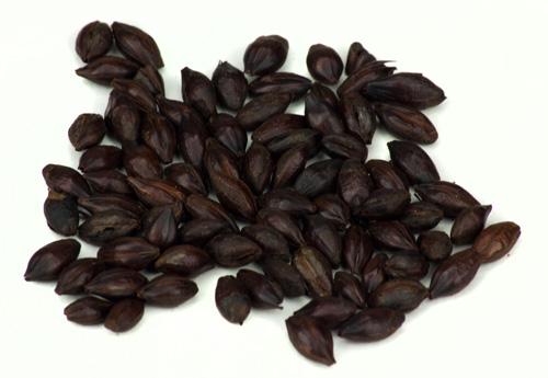 Muntons Roasted: Barley 1lb (1)