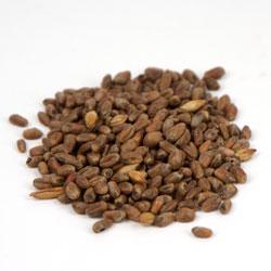 Thomas Fawcett Cara: Wheat Malt 1 lb (1)