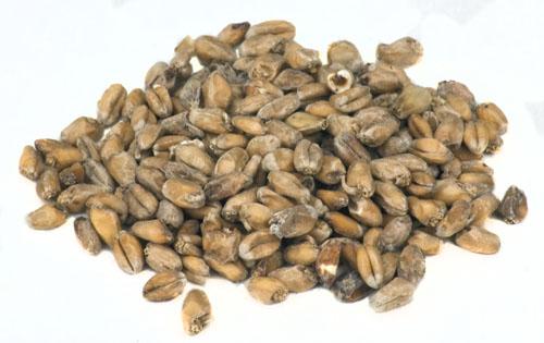 Weyermann Dark Wheat: RG (1)