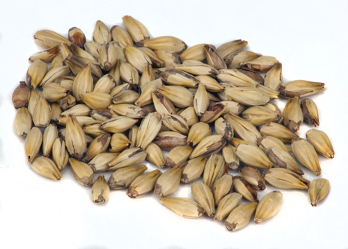 Briess 10L: Crystal Malt RG (1)