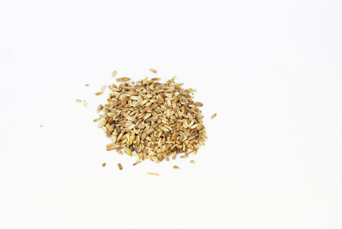 Simpson Golden Naked: Oats 1 lb (1)