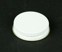 Metal Lids Gallon : screw cap each (1)
