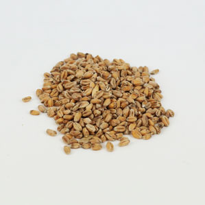 Weyermann Oak Smoked: Wheat 10 lb (1)