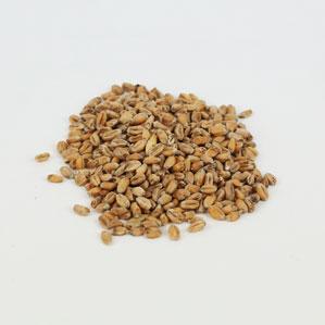 Weyermann Oak Smoked: Wheat 1 lb (1)