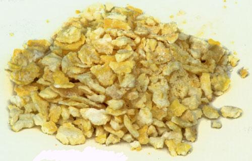 Flaked Maize:Bag 50 lbs (1)