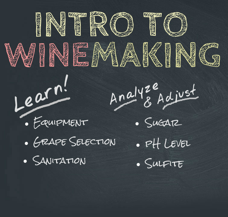 Winemaking from Grapes, 5/19/19-0