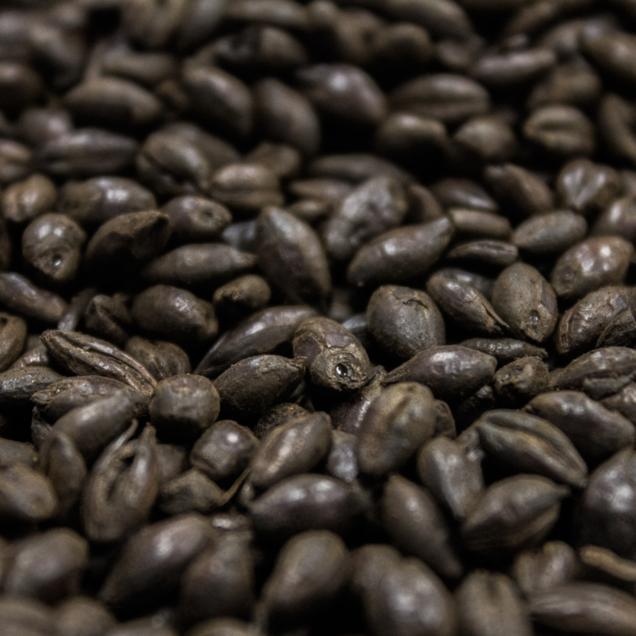 Black Malt, Crisp, Recipe Grains-0