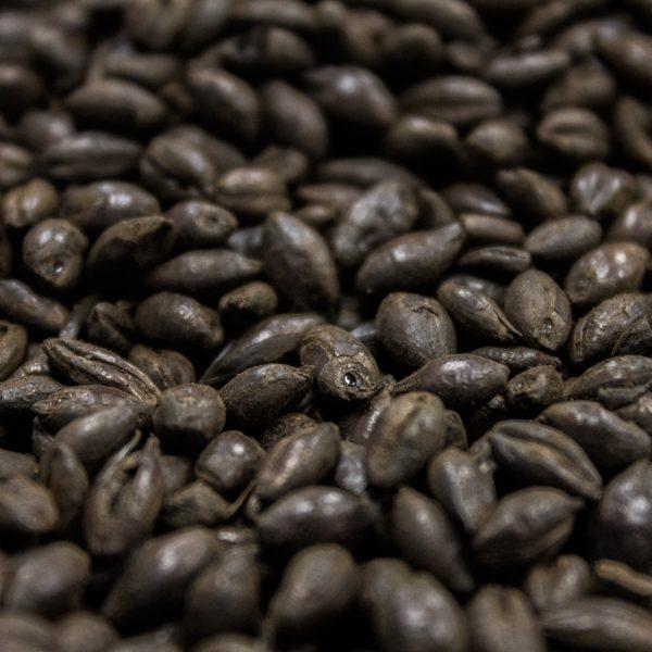 Black Malt, Crisp, 10 lb Bag-0